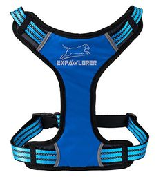 EXPAWLORER Sport Dog Harness for Pulling Adjustable by YKK Buckle Blue Large -- Learn more by visiting the image link.(This is an Amazon affiliate link)