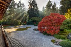 One Fall Afternoon at the Flat Garden in Portland Japanese Garden - HDR | by David Gn Photography