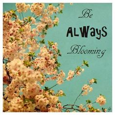 Be Always Blooming ~ Love this quote but didn't like the graphics with the one's I'd seen so I made my own. ^_^