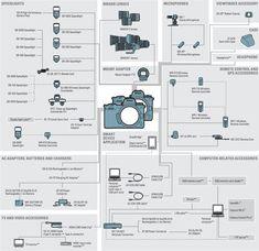Nikon D5 vs. D850 vs. D750 vs. D500 vs. Z7 vs. Z6 vs. Sony