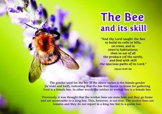 Skill of a bee