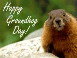 No matter how long the winter, spring is sure to follow. --English Proverb Happy Groundhog Day! Happy Groundhog Day, Spring Awakening, American Greetings, Inspirational Thoughts, English, Winter, Cards, Winter Time, English Language