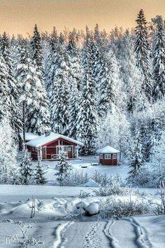 Cabin in the snowy woods, Finland. Winter Szenen, Winter Love, Winter Magic, Winter Christmas, Santa Christmas, Winter Season, Winter Holidays, Snow Scenes, Winter Beauty