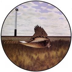 Sign and Harrier - Alex Colville Canadian Painters, Canadian Artists, New Artists, Art Gallery Of Ontario, Alex Colville, Tate Gallery, Magic Realism, Galleries In London, Visionary Art