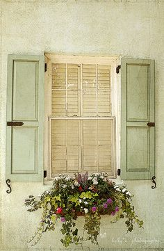 beautiful color scheme - greens and cream ith black detailing.  wrought iron window box.