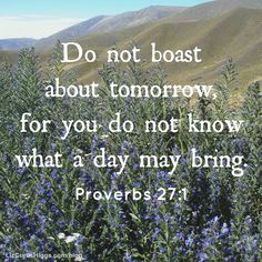 """#23 """"God is asking us to trust our tomorrows to Him. To embrace the promises in His Word."""" http://www.lizcurtishiggs.com/2014/07/your-50-favorite-proverbs-23-tomorrow-tomorrow/"""