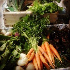 Livraison du jour,  #légumes #bio les #volonteux