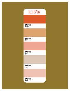 Current Life Color Palette