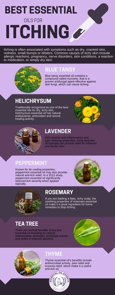 Skin Remedies Best Essential Oils for Itching: Itchy Feet, Skin, Jock Itch Blue Tansy Essential Oil, Essential Oils For Skin, Essential Oil Uses, Young Living Essential Oils, Essential Oil Anti Itch, Excema Essential Oils, Antibacterial Essential Oils, Oils For Dogs, Tips & Tricks