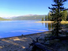 Turquoise Lake near Leadville, CO. This is my favorite place to go camping. The lake is just so beautiful!!! And it doesn't have that dirty fishy smell!!!