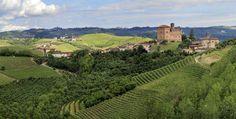 Grinzane Cavour, terra di Barbaresco
