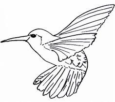 Milliande Art Prints Photo Keywords hummingbird DESSIN AU