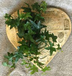 Indoor Flowering Plants, Pottery, Flowers, Ceramica, Pottery Marks, Royal Icing Flowers, Flower, Florals, Bloemen
