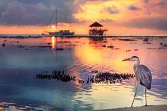 Sunset at Kandolhu resort in Maldives
