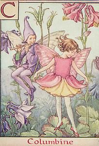 Columbine Flower Fairy print