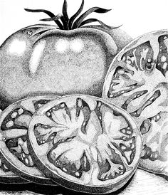 You Say Tomatoes by Marilyn Healey