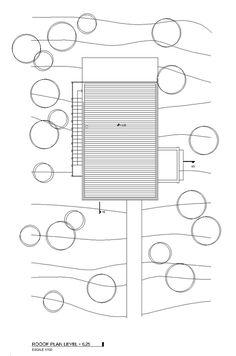 planta3.jpg 530×800 pixeles