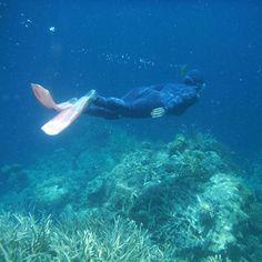今年の年始に行ったグレートバリアリーフでのシュノーケルで泳ぐ私ですw 姿は出さない方針でしたが顔がわからないので またまた少し旅の模様を投稿していきます fan to go somewhere  #australia #オーストラリア #greatbarrierreef #グレートバリアリーフ #snorkeling #シュノーケル  #sea #海 #hamiltonisland #ハミルトン島 #潜水 by fun_to_go_somewhere http://ift.tt/1UokkV2