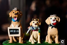 wedding rings with 3 dog cake topper