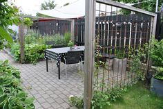 I Tages trädgård: Bästa hänget