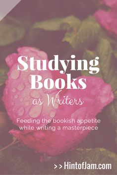As writers, we study books to become masters of our craft. In this post, we discuss ways to feed our book dragon appetites while learning from the best of the literary world. | Hint of Jam