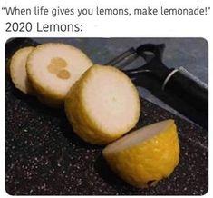 2020-lemons-meme Crazy Funny Memes, Really Funny Memes, Stupid Funny Memes, Funny Laugh, Wtf Funny, Funny Relatable Memes, Funny Stuff, Funny Food Memes, Sarcastic Jokes