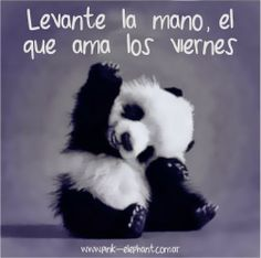 Feliz Viernes!- aaaaaaaaaaaaww, so cute!!