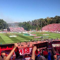 VAAAAMOOOOS!! #carregabenfica by deejaykamala pic.twitter.com/oiUiAXO9xm
