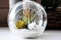 Holiday terrarium ornament by Crown Flora