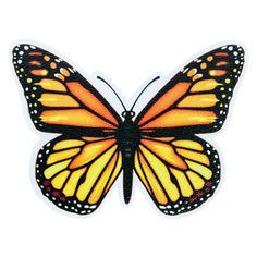 Butterfly Orange - YOU.patch