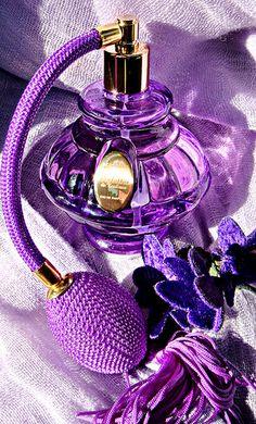 Fresh soft Purple Color