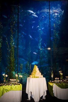 Long Beach Aquarium Wedding. It was such a unique venue, the dance floor was underneath a life size hanging whale and the cake up against one of the World's Largest Fish Tanks! Such a Cool Wedding!