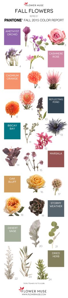 Fall Flowers as inspired by Pantone 2015 Fall Color Report on Flower Muse blog: http://www.flowermuse.com/blog/2015-fall-flowers-pantone-inspiration/