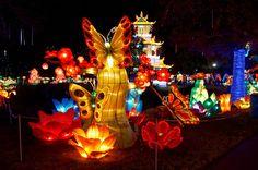 Chinese Lantern Festival. Fair Park. Dallas, Texas. Photo by Andy New.