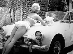 Terry-Thomas, behind the wheel of a 1961 Sunbeam Alpine, with Tuesday Weld as a bonnet ornament, in the 1962 film 'Bachelor Flat' James Dean, James Bond, Don Johnson, Steve Mcqueen, Tuesday Weld, Terry Thomas, Tr 4, Bombshell Beauty, Vintage Bikini