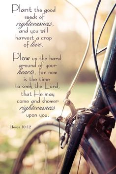 Love these verses ♡  #SowGoodSeeds