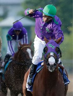 California Chrome, ridden by jockey Victor Espinoza, wins the Preakness Stakes horse race at Pimlico Race Course, Saturday, May in Baltimore. Preakness Stakes, Preakness Winner, American Pharoah, Derby Winners, Sport Of Kings, Thoroughbred Horse, Horse Racing, Race Horses, Horse Love