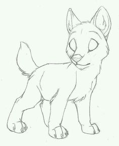 Lobo cachorro