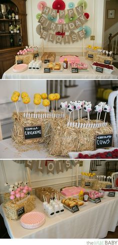Eloise's Petting Zoo Birthday Party | The Wise Baby | Bloglovin'