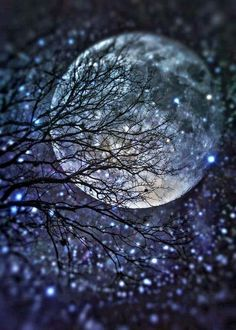 """""""The moon embalms me with her love and she kisses me good night. The nightingale sings her song of love when I take rest in the arms of darkness in the night!"""" ― Avijeet Das Good night,…wherever you. Moon Moon, Sun Moon Stars, Moon Art, Blue Moon, Ciel Nocturne, Shoot The Moon, Moon Magic, Jolie Photo, To Infinity And Beyond"""