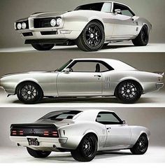 Pontiac Firebird  Nice Page. Quick shout out to the coolest relocate company. You should car with us. Premium Exotic Auto Enclosed Transport. We are coast to coast and local. Give us a call. 1-877-eHauler or click LGMSports.com