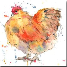 Watercolor Animals, Watercolor And Ink, Watercolor Paintings, Watercolours, Chicken Painting, Chicken Art, Buff Chicken, Chicken Animal, Chicken Tattoo