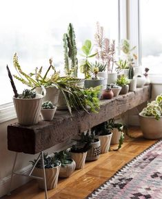 vintage-indoor-plant-with-scandinavian-ideas