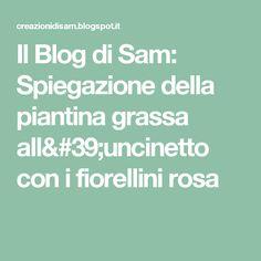 Il Blog di Sam: Spiegazione della piantina grassa all'uncinetto con i fiorellini rosa
