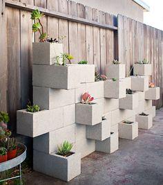 #PinMyDreamBackyard succulent wall
