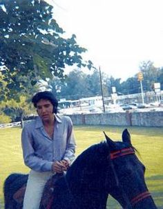 Elvis Cousin at Graceland | this is a very rare item owned by elvis presley elvis s red horse ...