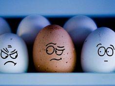 Eggs faces :))