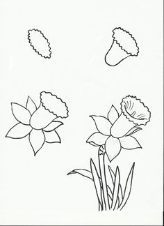 how to draw flowers calla lily art lesson drawing page early