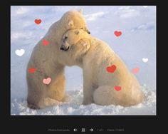 L'amore arriva su Google Plus: le foto di baci e abbracci si arricchiscono di cuoricini per San Valentino - http://www.tecnoandroid.it/lamore-arriva-su-google-plus-le-foto-di-baci-e-abbracci-si-arricchiscono-di-cuoricini-per-san-valentino/