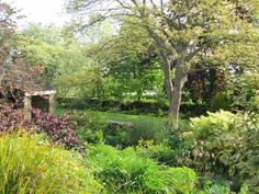 The Galloping Gardener: Margery Fish's cottage garden paradise
